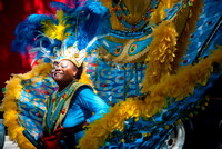 2008 West Indian Day Parade, Brooklyn